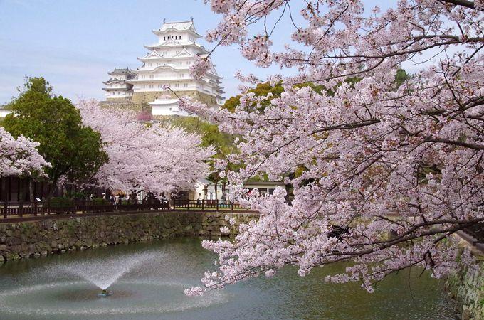 お城の中にある動物園「姫路市立動物園」