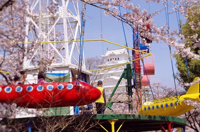 桜の時期はうれしい無料開放、姫路市立動物園内から見る