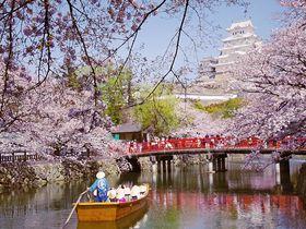 神戸・兵庫県内のおすすめ桜スポット8選!定番の名所ばかり