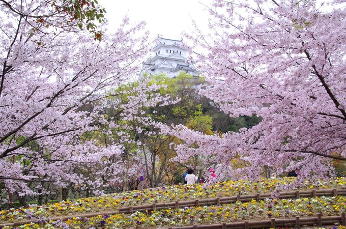 グルッと内堀の外から見る姫路城