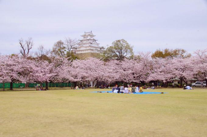 グルッと内堀の外から眺める姫路城