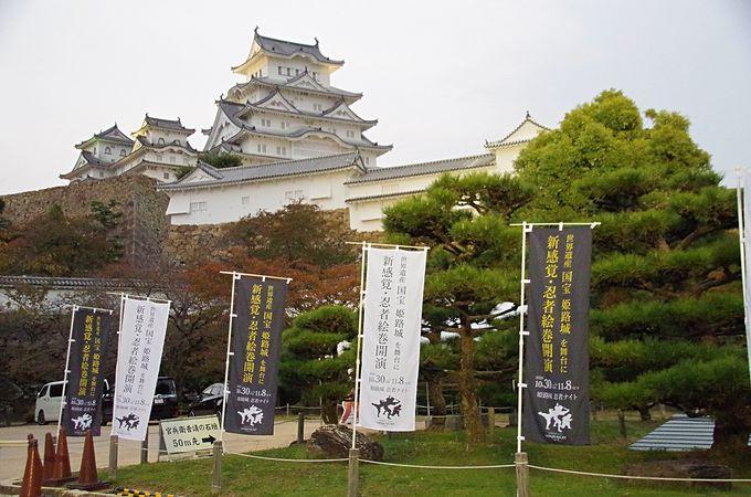 姫路城を舞台に新感覚の忍者絵巻が開演