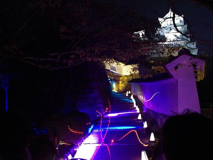 夜間初公開の将軍坂やお菊井戸・二の丸での幻想的な演出