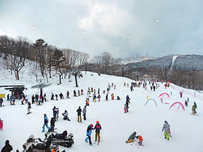 国内14年ぶりの新設スキー場「峰山高原リゾート ホワイトピーク」