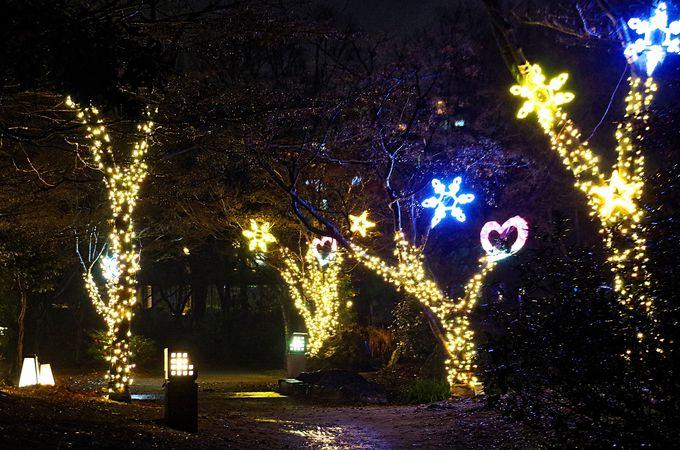 「京都・冬の光宴2018」をはじめ、インスタ映えスポットも満載の梅小路公園