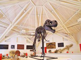 「玄武洞ミュージアム」がリニューアル、城崎温泉や玄武洞と一緒に