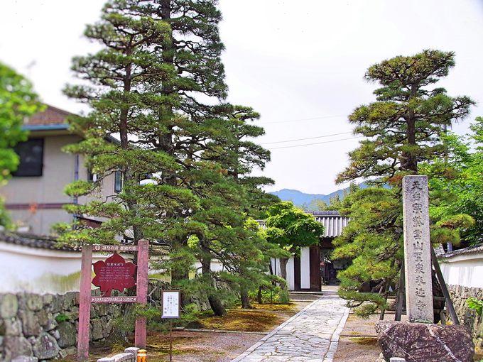 山崎合戦後に落城した坂本城