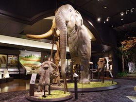 滋賀県立琵琶湖博物館グランドオープン!びわ湖の価値と歴史がここに