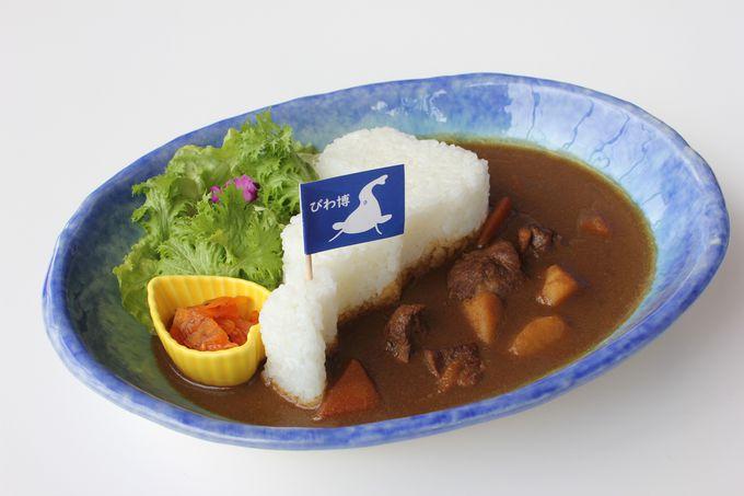 琵琶湖博物館はお土産とグルメにも注目!