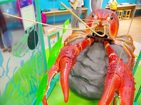琵琶湖博物館の2018年リニューアル おとな向けコーナーも登場