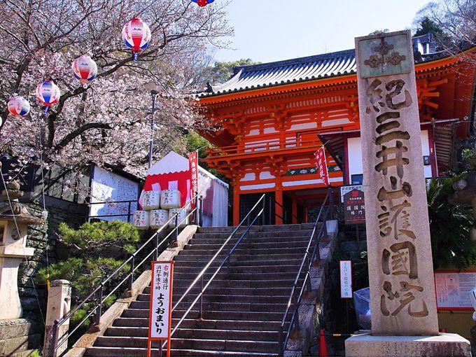 プラン3:和歌山市内に泊まって歴史めぐり