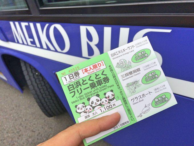 はじめての和歌山旅行 交通手段とおすすめプラン