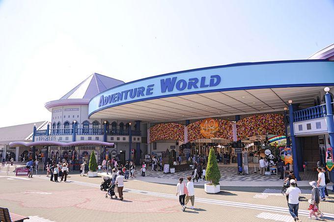 プラン1:和歌山の王道観光スポット「アドベンチャーワールド」