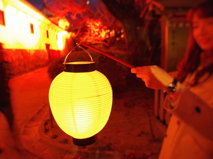 LED提灯がポイント 姫路城西の丸・百間廊下が「光の回廊」に