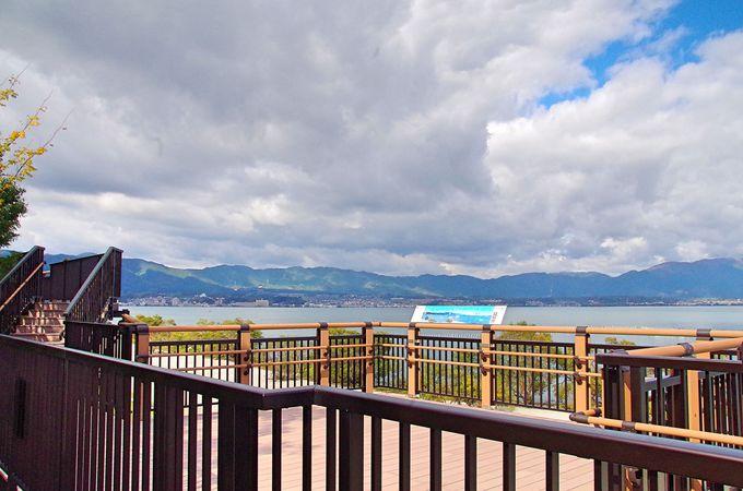 琵琶湖の風景と人や鳥の営みを眺めよう