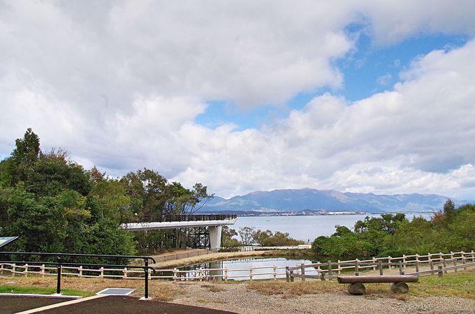 琵琶湖湖畔に誕生 新絶景スポット びわ博の樹冠トレイル