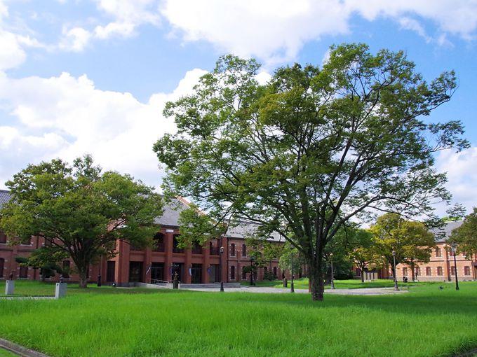 「姫路市立美術館」川端が愛した美術品を展示