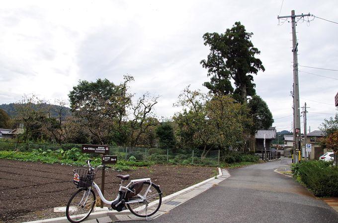 2日目午後:レンタサイクルで関ケ原古戦場を駆けめぐる