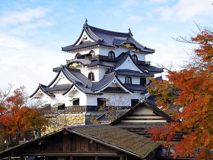 美しい彦根城天守を見るオススメスポット
