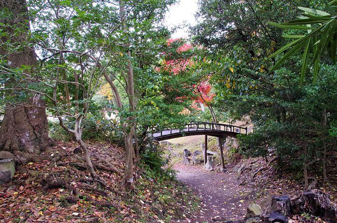 大名庭園「玄宮園」ならではの楽しみ方