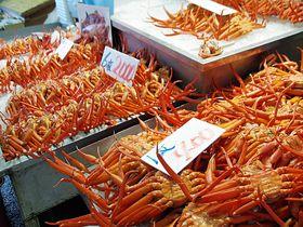 鳥取「境港水産物直売センター」で美味しいベニズワイガニを食べよう