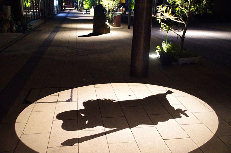 夜こそ行きたい「水木しげるロード」妖怪うごめく鳥取県境港