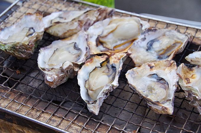 内海湾の長寿牡蠣で健康パワー「カキハウス内海湾」