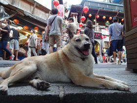 九份で会いましょう。台湾屈指の観光地であなたを迎える街の「顔」