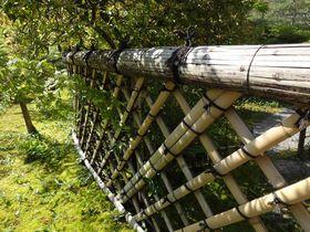京都洛北の自然に恵まれた閑静な「光悦寺」で江戸初期の芸術家たちに想いを馳せる