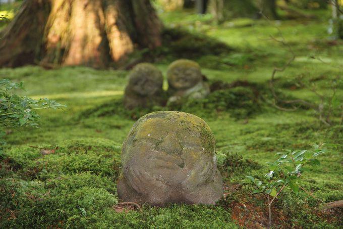 """三千院境内では苔の中から顔を出した""""わらべ地蔵""""が可愛らしい❤"""