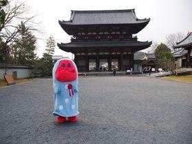 京都の世界遺産3つを巡る「きぬかけの路」と喋るゆるキャラ「きぬか怪(ケ)さん」