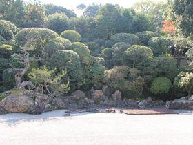 南禅寺塔頭「金地院」で大人の京都を楽しむ