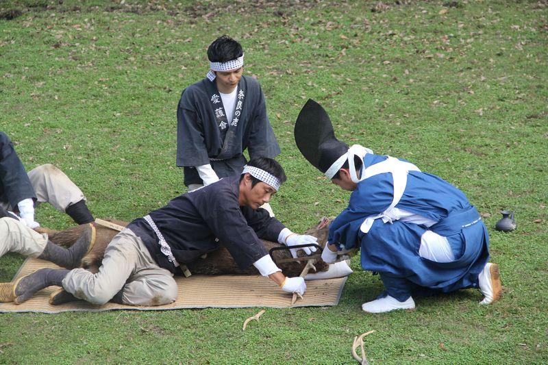 迫力満点!奈良「春日大社」の神事「鹿の角きり」は必見!