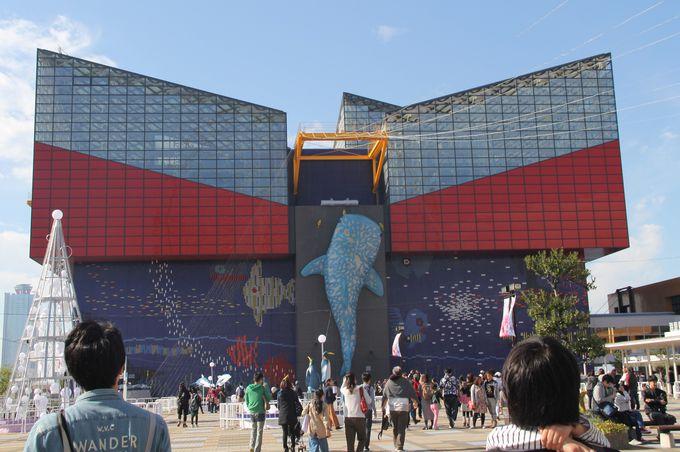 「海遊館」はスマートでカッコイイ水族館!