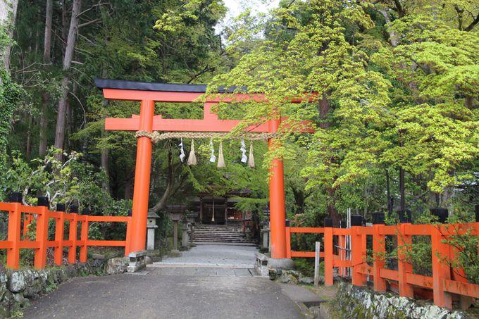 上賀茂神社よりも古い!?カキツバタで有名な「大田神社」