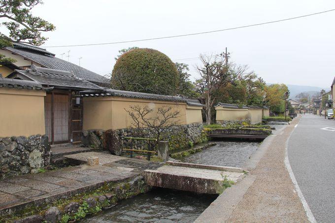 静かで落ち着いた大人の京都!上賀茂「社家」の街並みを散策しよう