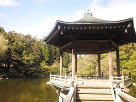 千葉・新勝寺と成田山公園散策
