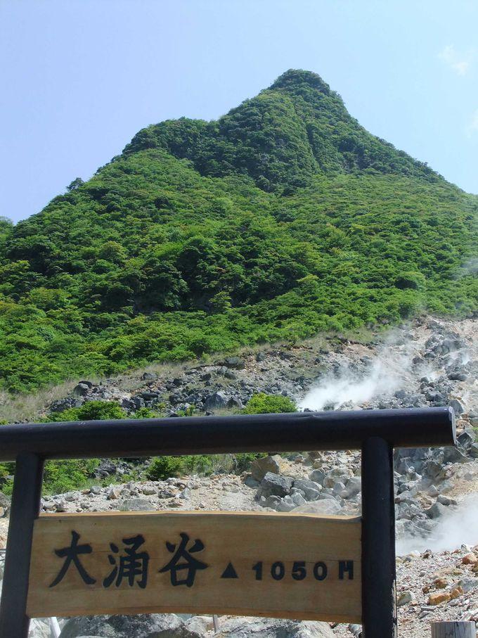 噴煙たちあがる大涌谷の山々