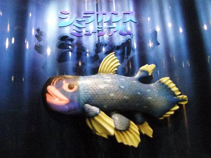 シーラカンスミュージアムへはシーラ爺がお出迎え!