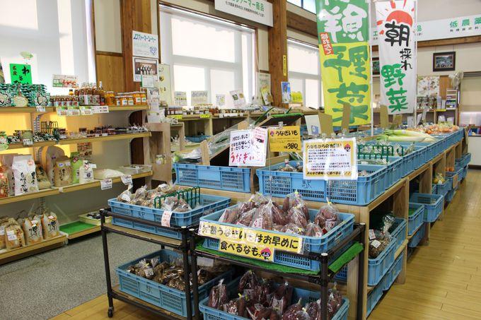 地元の新鮮野菜や海産物などお土産も大充実