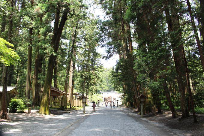 1450年以上もの歴史ある神社