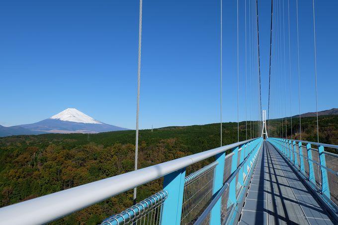 日本最長の歩行吊橋が三島の地に誕生!
