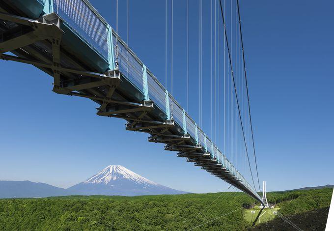 安全性をしっかり確保しながらも景色を最大限に楽しめる吊橋の設計