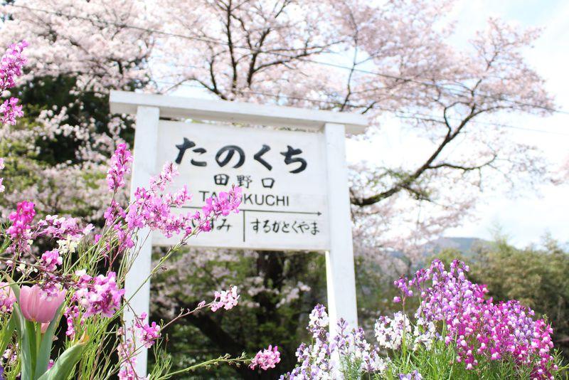 一度でヤミツキ!月一開館の大井川鐵道田野口駅「まちかど博物館」が温かい!