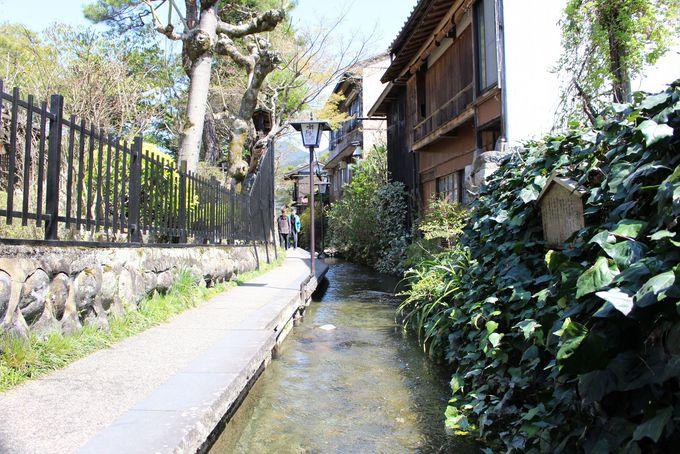 清流と名水の城下町をのんびり散歩しよう!