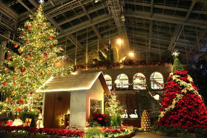 大温室「クリスタルパレス」の冬のテーマは「聖夜の贈り物」