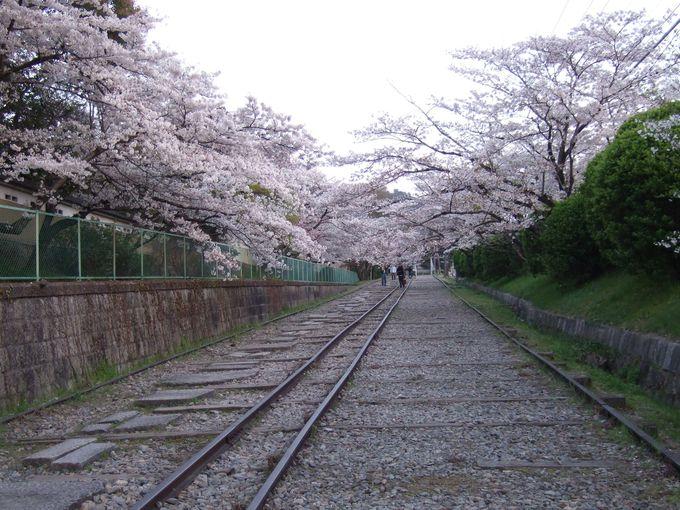 歴史を感じる琵琶湖疏水