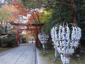 みくじ掛けがハートの形?!京都「大原野神社」で良縁祈願!