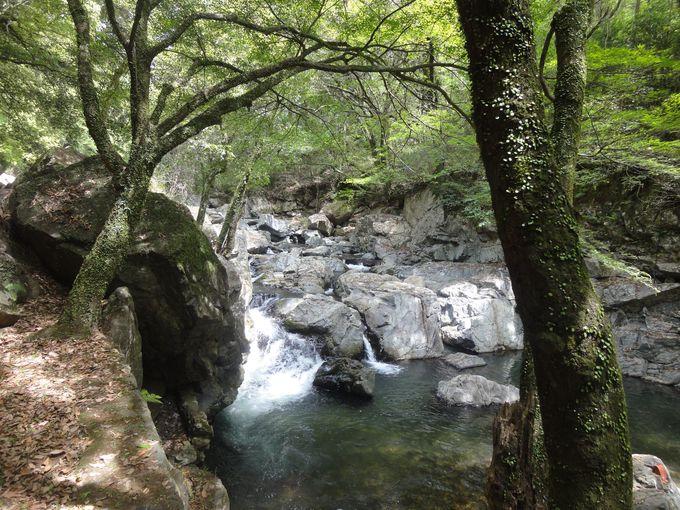 四季折々の自然美を楽しめる渓谷を散策!夏には川遊びもオススメ!