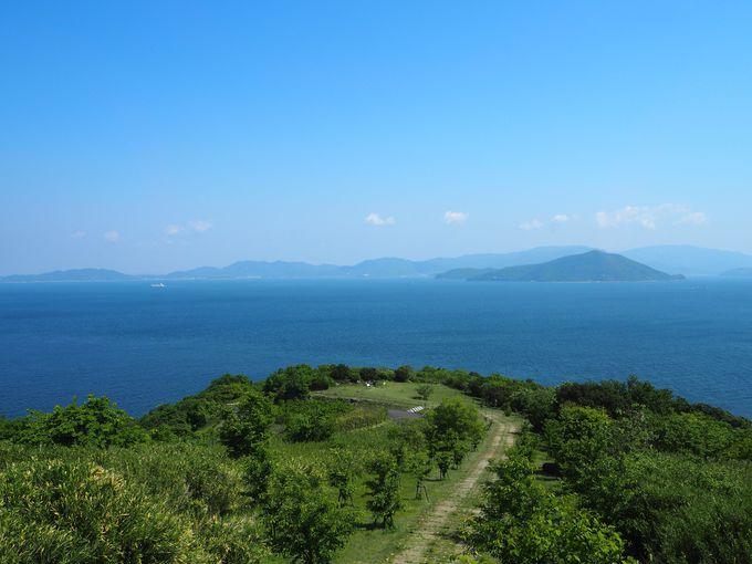 絶景をのんびり堪能できる大串自然公園